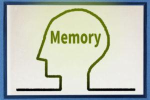 記憶する脳